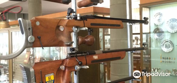 Swiss Rifle Museum (Schweizerisches Schutzenmuseum)2