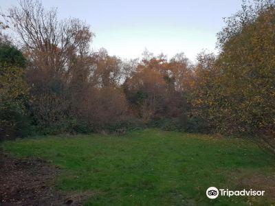 Gunnersbury Triangle Nature Reserve