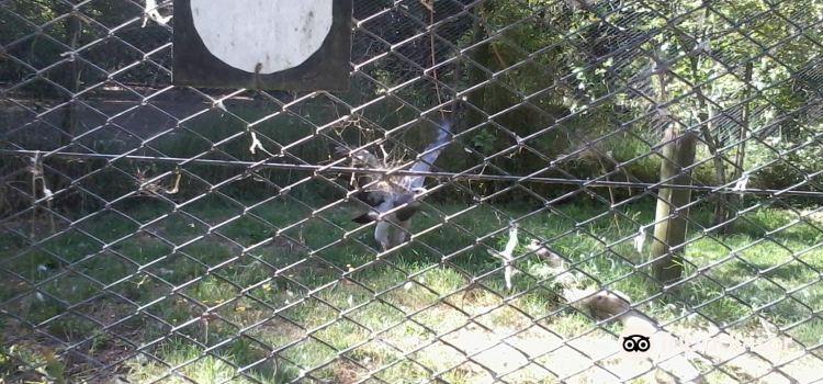 El Paraiso Zoo (Zoologico El Paraiso)3