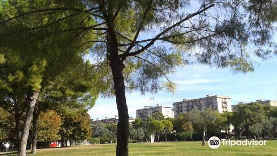 Parco 2 Giugno