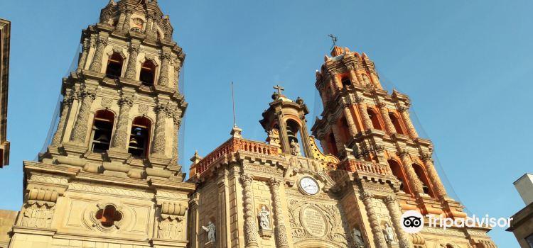 Cathedral of San Luis Potosi1