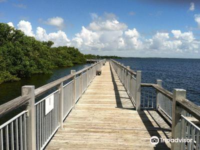 Everglades Cruises