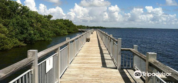 Everglades Cruises2