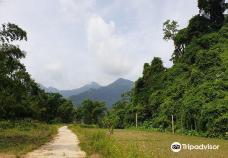 Ba Be National Park-TT. Vi Xuyen