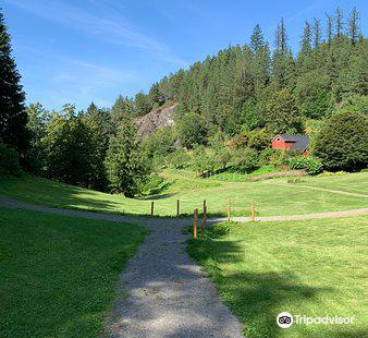 Svinviks Arboretum
