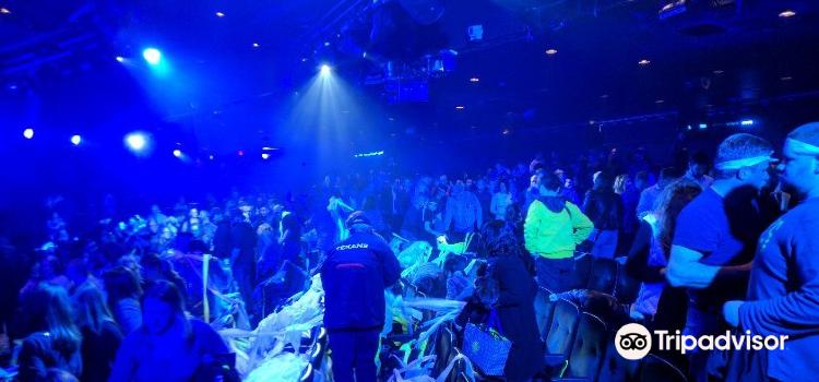 Blue Man Group Show1