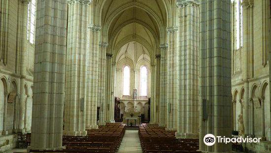 Collégiale Du Puy-Notre-Dame