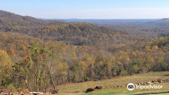 Appalachian Trail: Jenkins Gap to Chester Gap