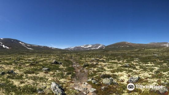 Dovre-Sunndalsfjella National Park