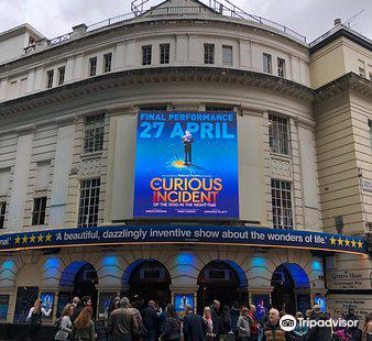 The Curious Incident Of The Dog In The Night‑Time