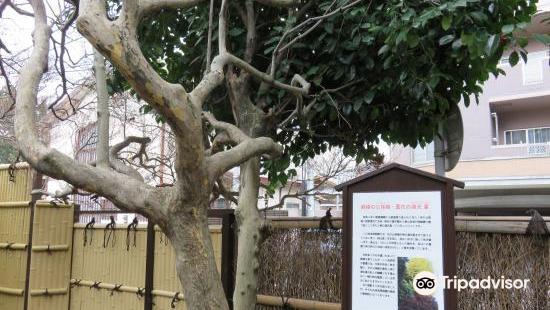 Goto Zezan Memorial Museum