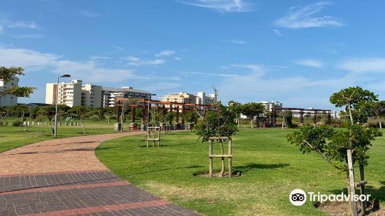 綠點公園與生物多樣性花園