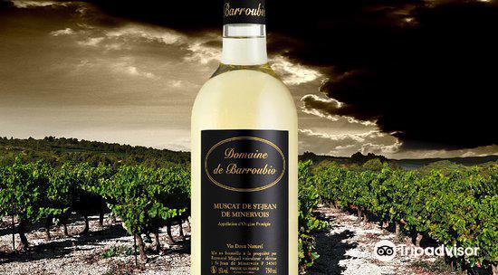 Espace Vin de Saint Chinian