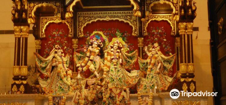 ISKCON Chandigarh Sri Sri Radha Madhav Temple2