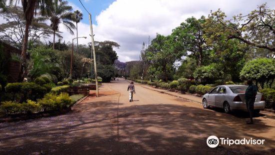 奈洛比觀景