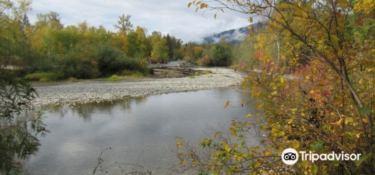 Adams River3
