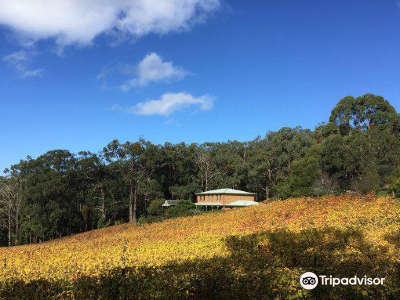 Rahona Valley Vineyard