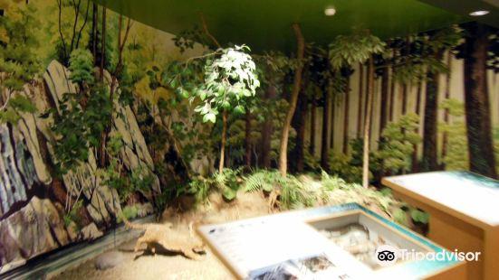 Tsushima Wildlife Conservation Center