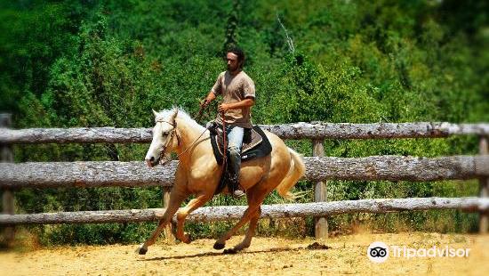 Moncerlongo Ranch