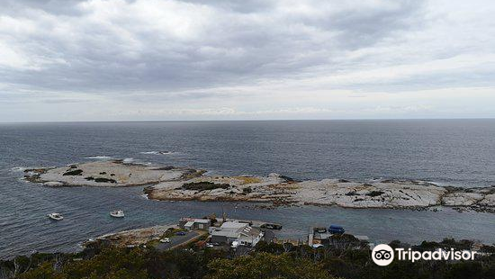 Whalers Lookout