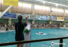 Gelendzhik Dolphinarium-格连吉克