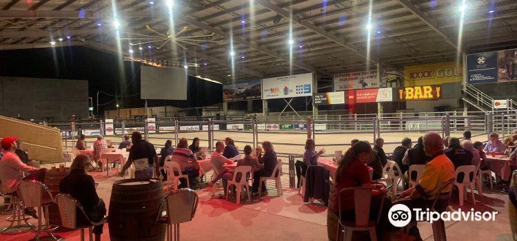 Nissan Navara Arena3
