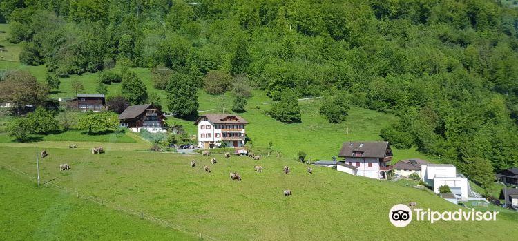 Mineralbad & Spa Rigi Kaltbad3