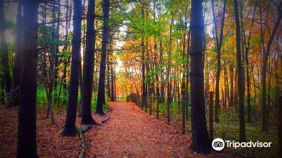 Carolyn Rosas County Park