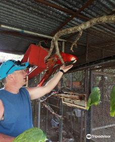 Jungla de Panama Wildlife Refuge-博克特