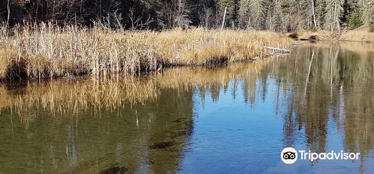 Prince Albert National Park2