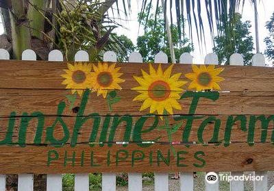Sunshine Farm Philippines