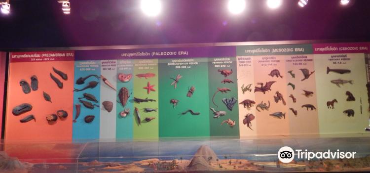 Princess Maha Chakri Sirindhorn Natural History Museum3