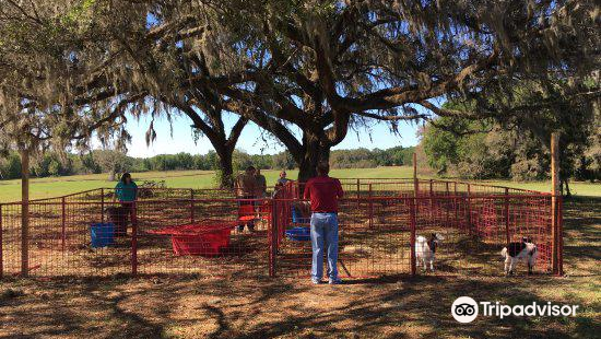 Kirby Family Farm