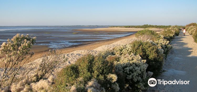 Landes de Gascogne Regional Natural Park2